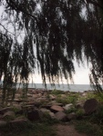 Edgewater Beach